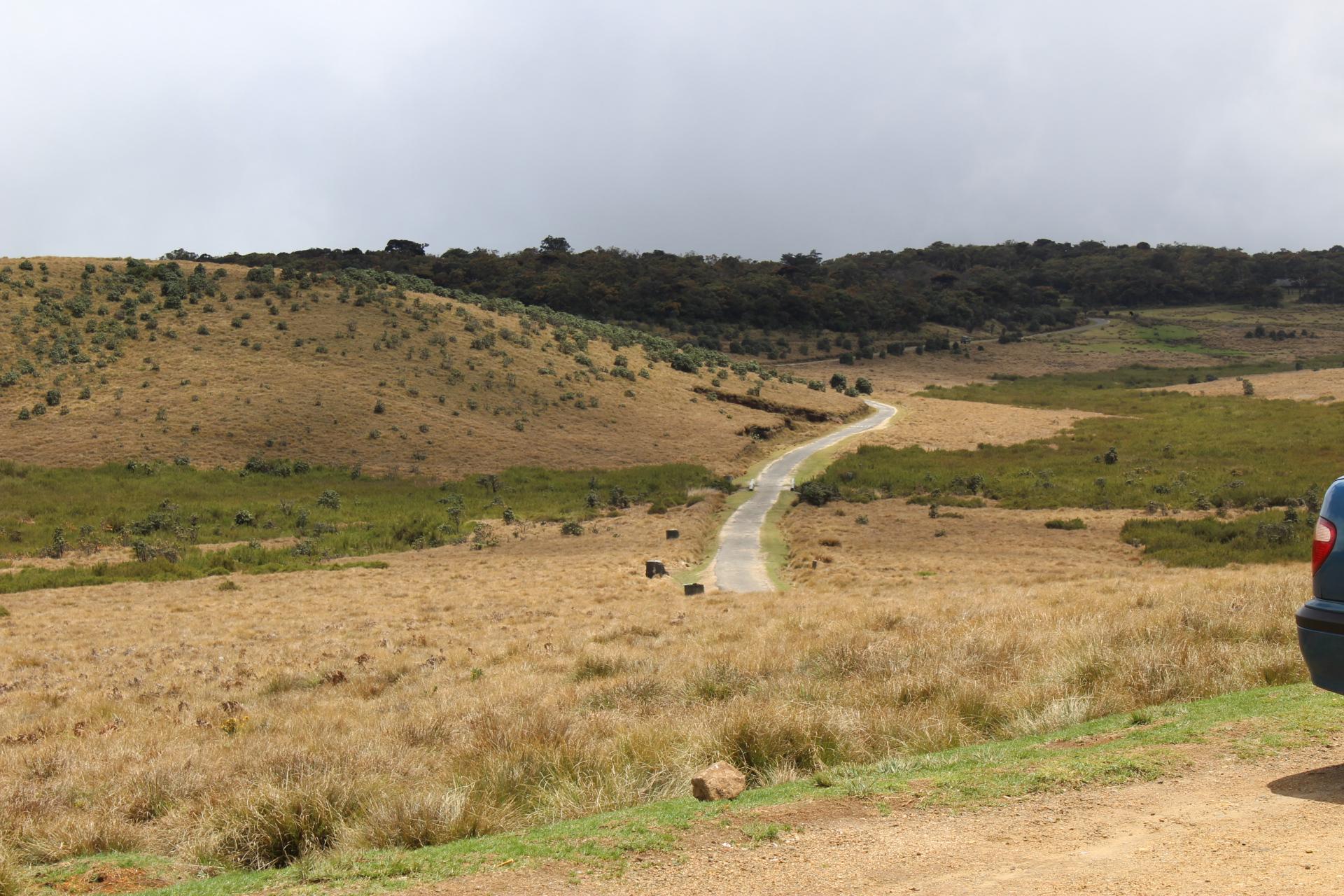 hortan plains