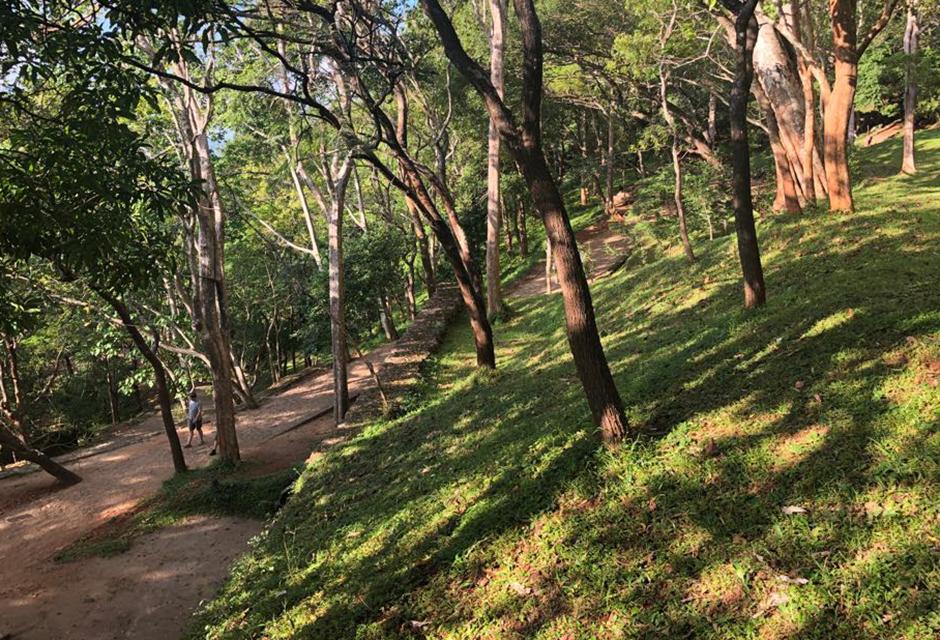 Garden of Sigiriya