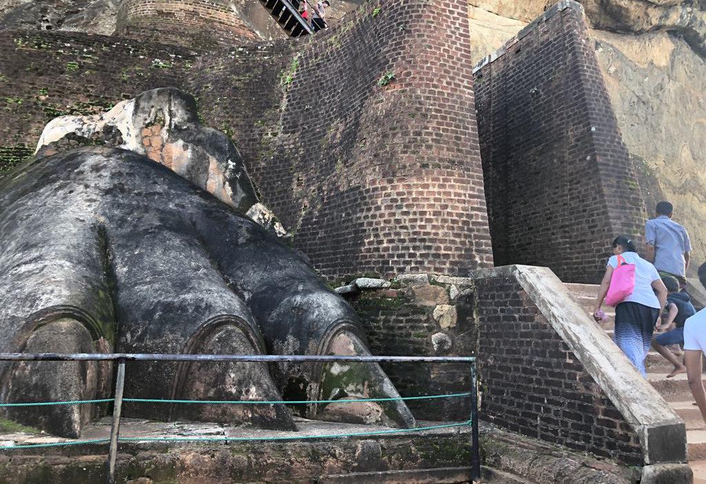 Giant Lion's Paw of Sigiriya