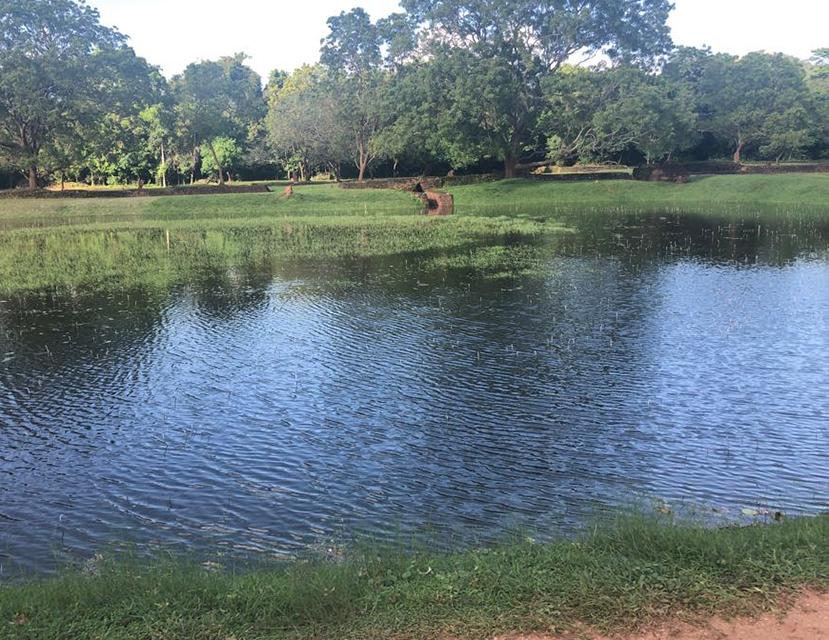 Pond  of Sigiriya